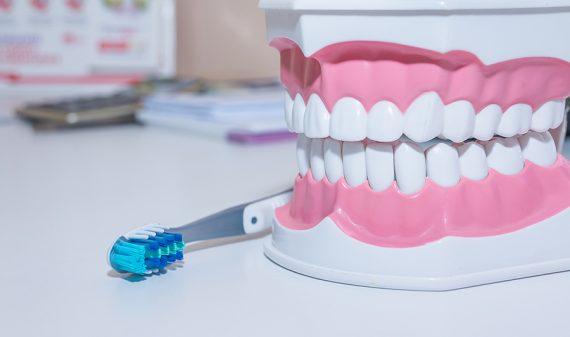 Odontopediatria y Odontologia Materno Infantil en Chamberi - Baquero Odontología Familiar-2